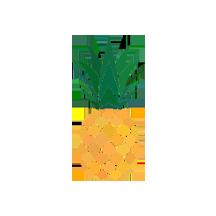 Categoria de Gelatina Sabor Abacaxi